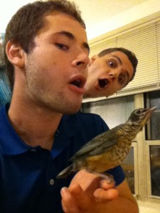 Bird took a risk with me, survived the hurricane!